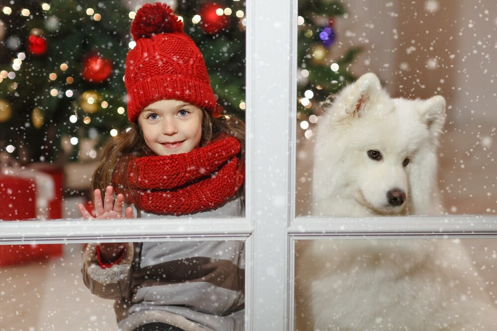 writing for christmas winter books